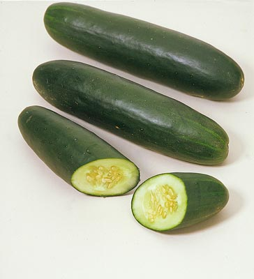 pepino1.jpg